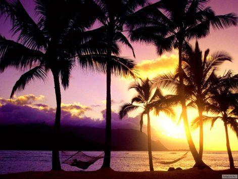 kauai_hawaii.jpg