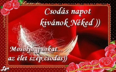 www_tvn_hu_39dd179a6c2bce652d095f96a8e180c5.jpg